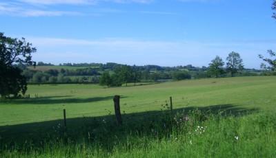 Wensum Valley