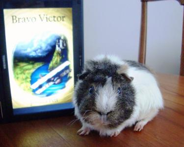 Friday Fiction: Victor's story