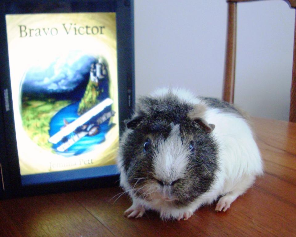 Victor with ebook Bravo Victor