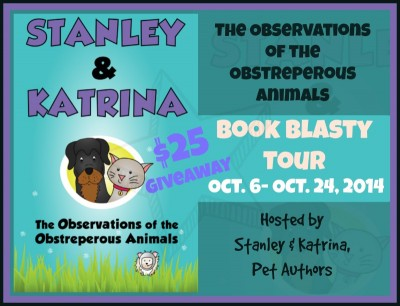 Book Review and Blog Tour | The Observations of the Obstreperous Animals