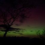 Aurora 241214 Treshnish & Haunn