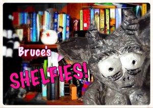 Shelfies – my 2016 in book titles