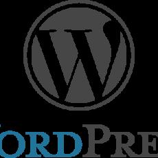 Backroom Blogging   techtalk for WordPress.org users