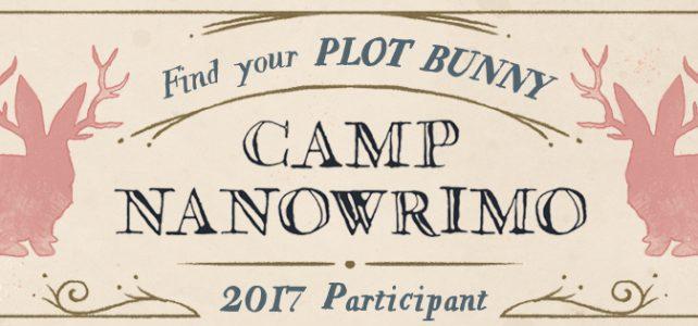 camp nano 2017