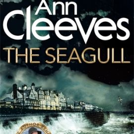 Book Review | The Seagull by Ann Cleeves