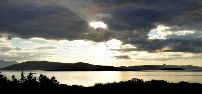 #writephoto for March | Lambent – a clifi story
