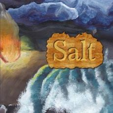 Book Review | Salt by Helen Laycock