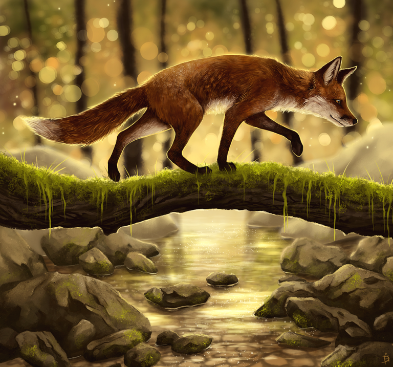 foxstroll