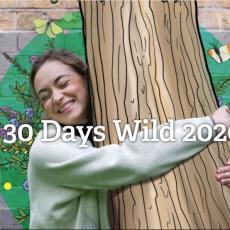 #30DaysWild Third week review