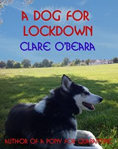 dog for lockdown