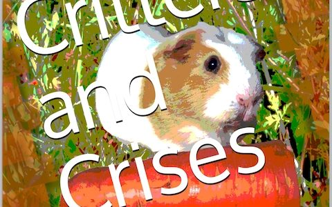 Question of the month / Critters and Crises launch #IWSG