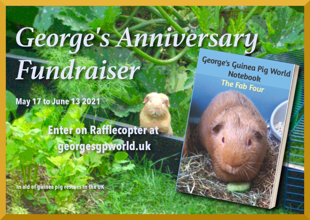 George's anniversary fundraiser badge at georgesgpworld