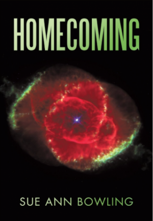 Book Review | Homecoming by Sue Ann Bowling