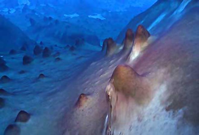 Methane Archaea