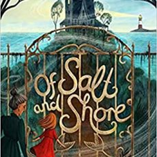 Book Review   Of Salt and Shore by Annet Schaap
