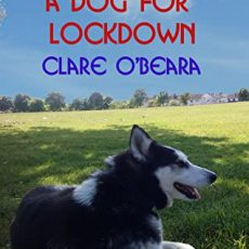 Double Book Review   Irish Lockdown series by Clare O'Beara