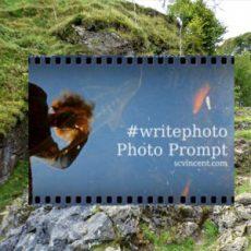 Monday haiku | Neptune fishing #writephoto