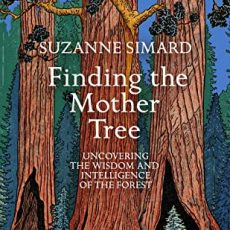 Book Review | Finding the Mother Tree by Suzanne Simard #30DaysWild