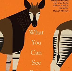 Book Review | What You Can See From Here